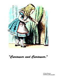 alice_in_wonderland_curiouser_2